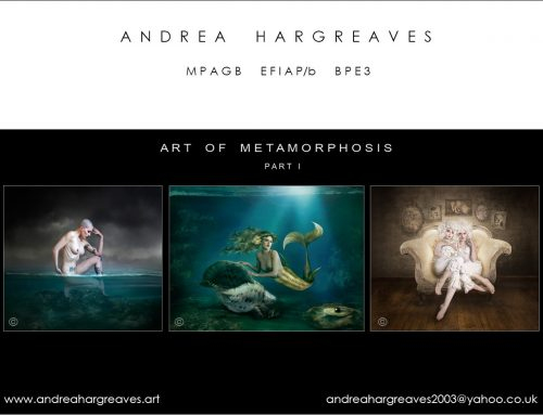 The Art of Metamorphosis Part 1 – Andrea Hargreaves