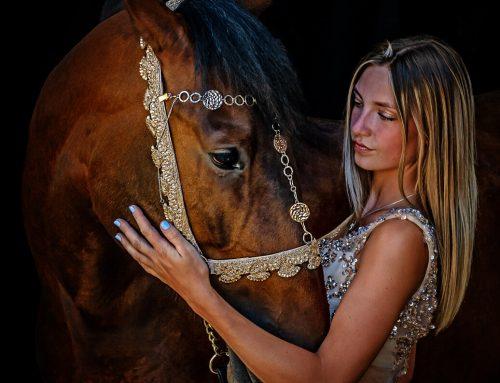 Shooting Horses – Yeguada Inspirada Stud